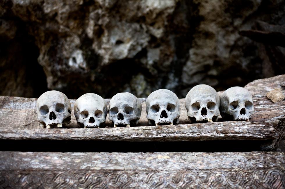 crânes rites funéraires pays toraja sulawesi indonésie