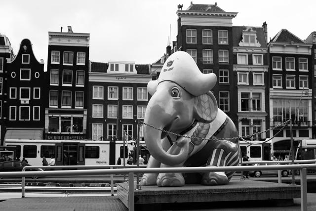 immeubles éléphant canal amsterdam