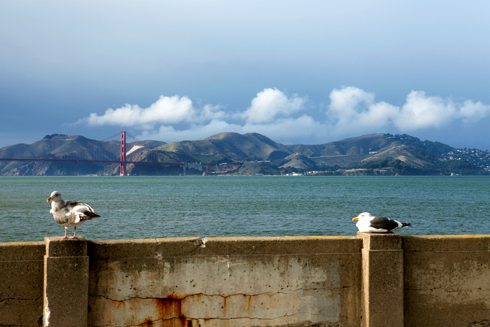 Baie de San Francisco : .