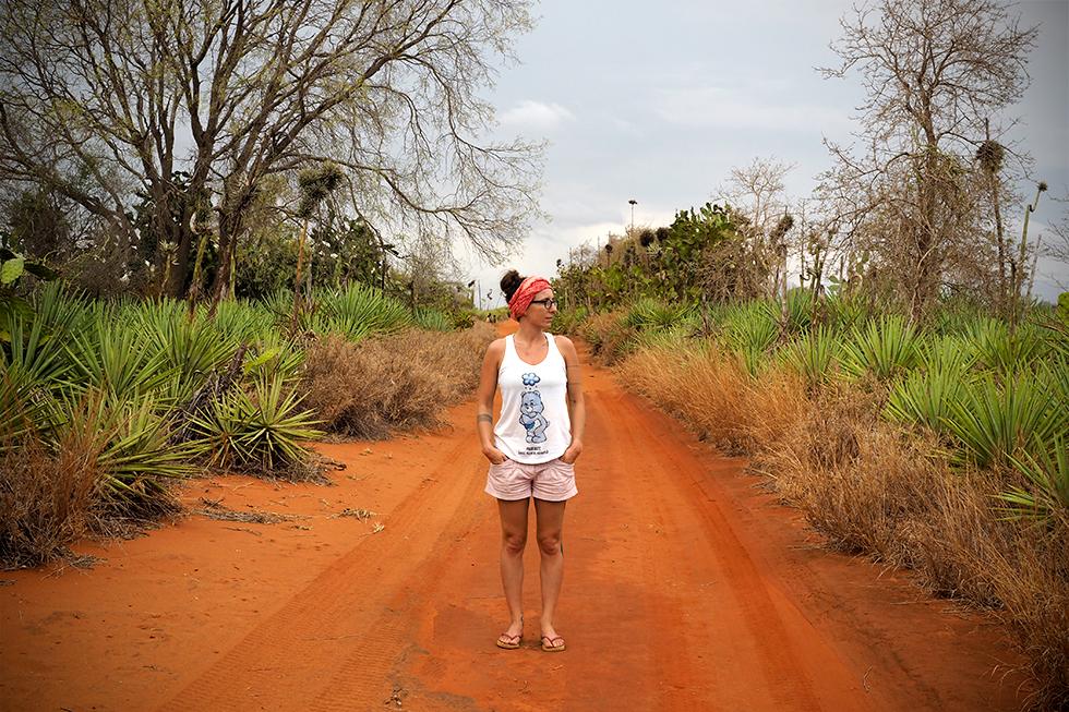 Madagascar parc Berenty région Androy