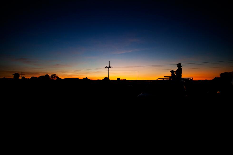 Levé de soleil à Kununurra, Western Australia : .