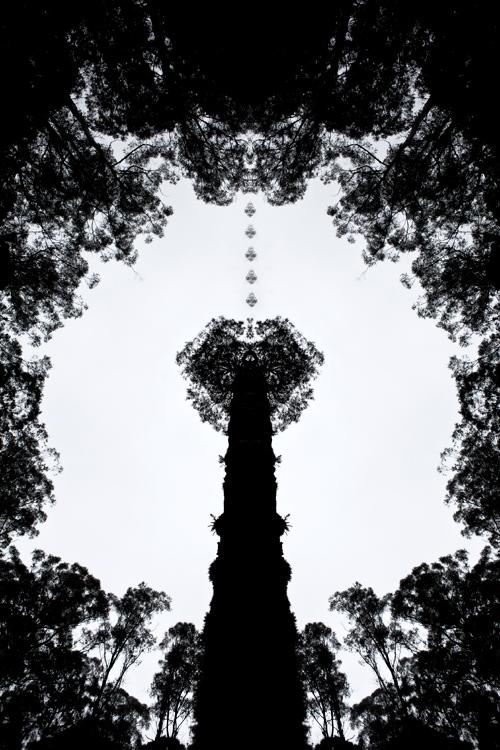 Graphisme géométrique Photoshop : .