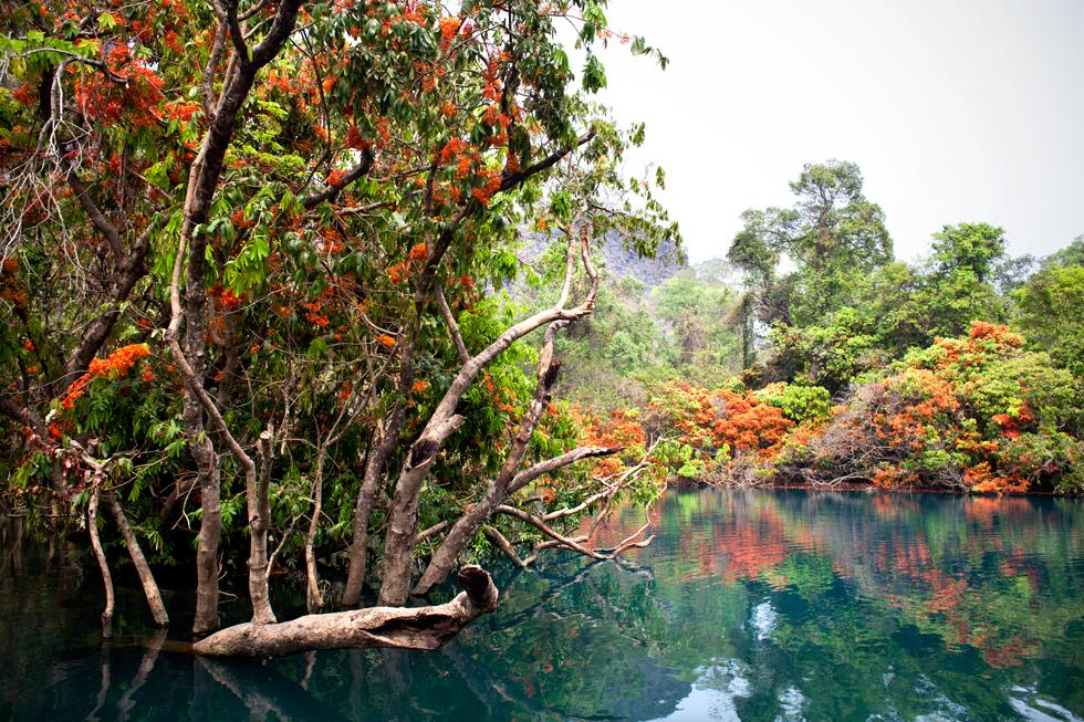 Blue Lagoon, boucle de Thakkek au Laos : .