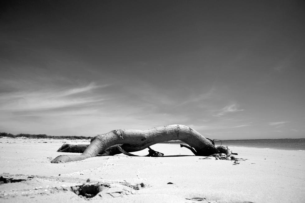 Parc national Cape Range à Exmouth, Western Australia : .