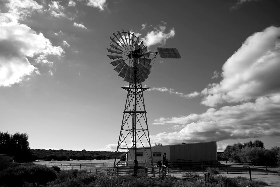 Vieille éolienne au parc national François Peron, Western Australia : .