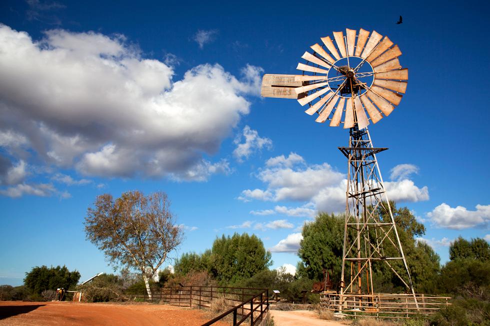 Vielle éolienne au Parc national François Peyron, Western Australia : .