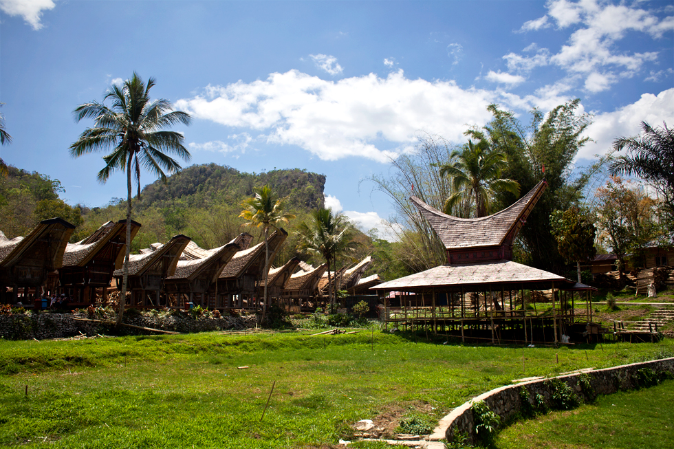 Village traditionnel Toraja en Sulawesi, Indonésie : .