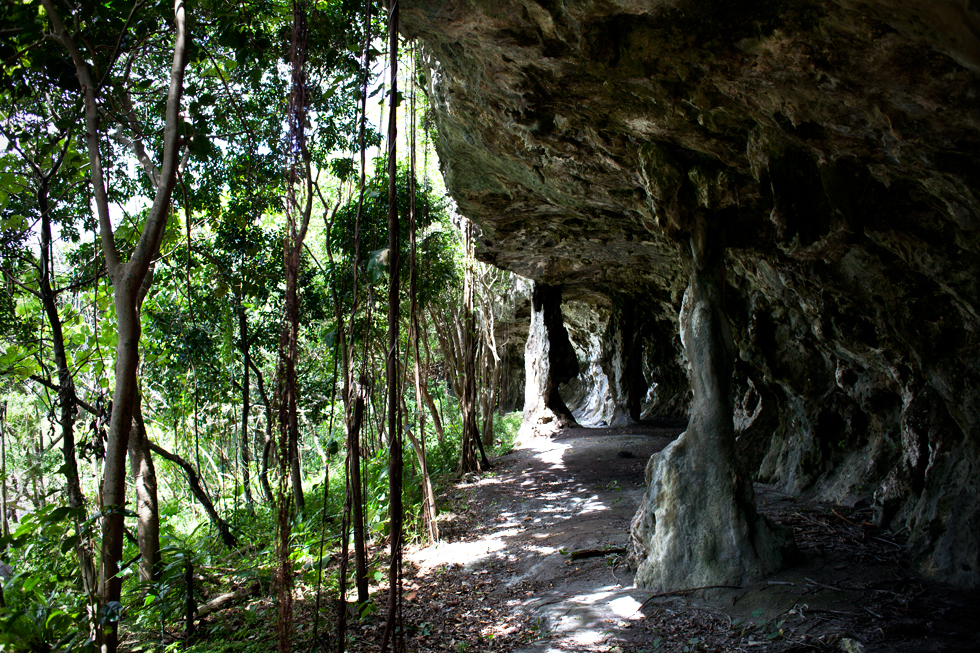 Maré, Nouvelle Calédonie : .