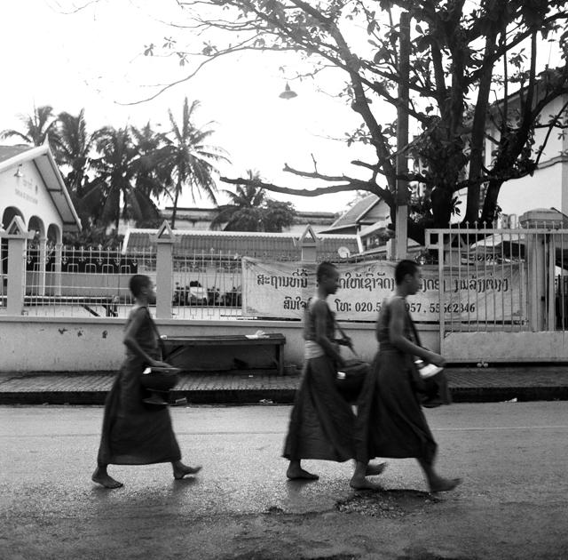 Jeunes bonzes à Luang Prabang Laos : .