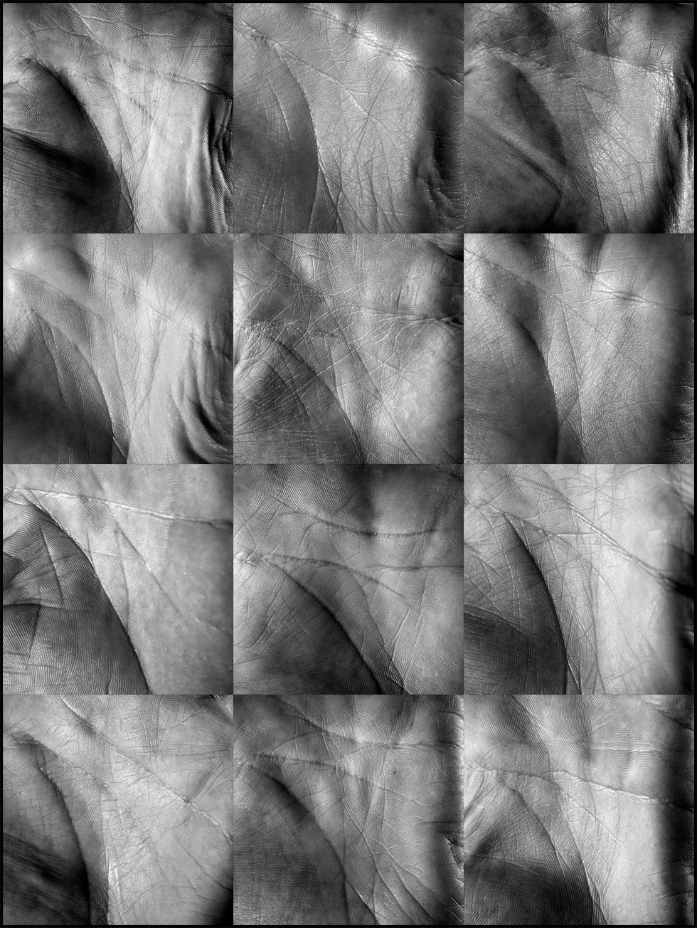mosaique-d'identites paumes de mains et ligne de vie