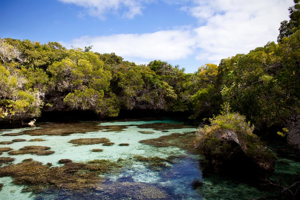 Piscine naturelle à Maré, Nouvelle Calédonie : .