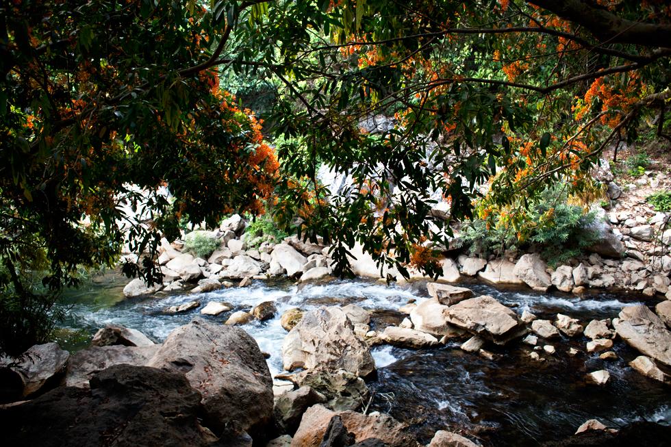 Grotte de Konglor au Laos : .