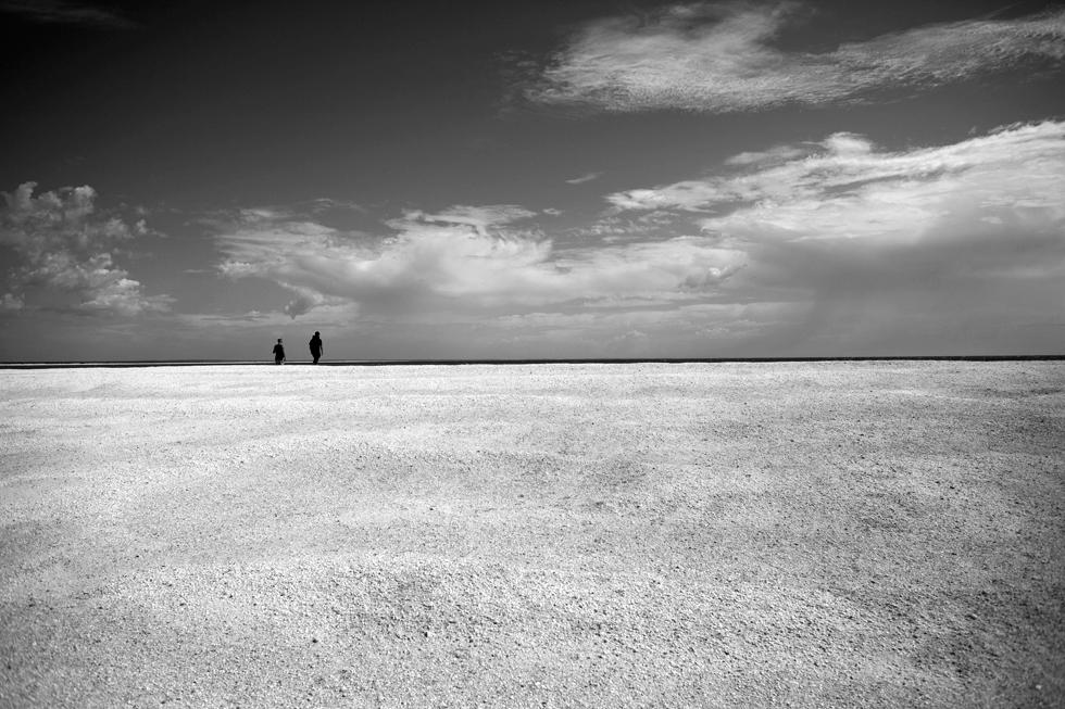 Shell beach, Western Australia : .