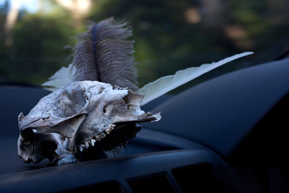 Dans la voiture de Lesley à Melbourne : .