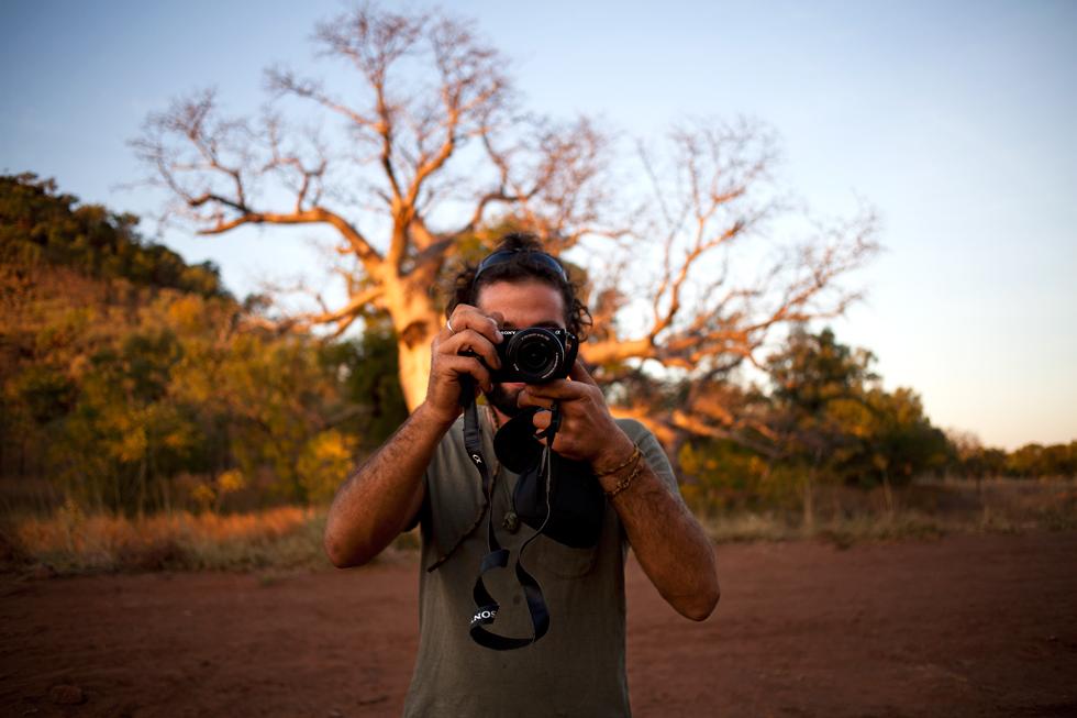 Tinou à Kununurra, Western Australia : .