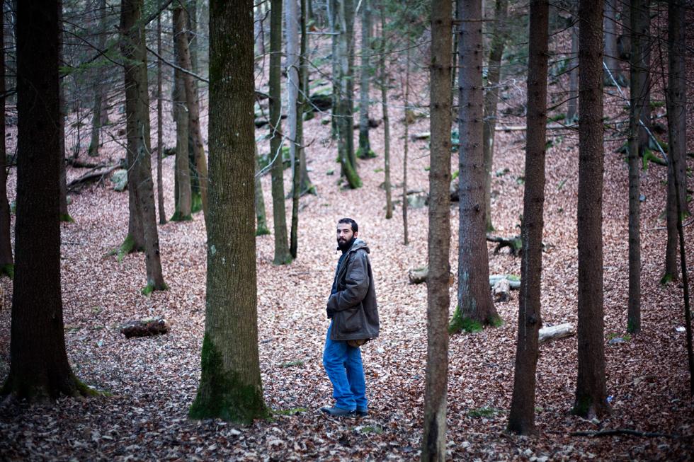 Tinou en forêt aux Houches en Haute Savoie, France : .