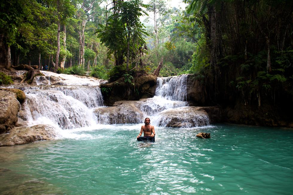 Tinou à Kuang Si Fall, Province de Luang Prabang, Laos : .