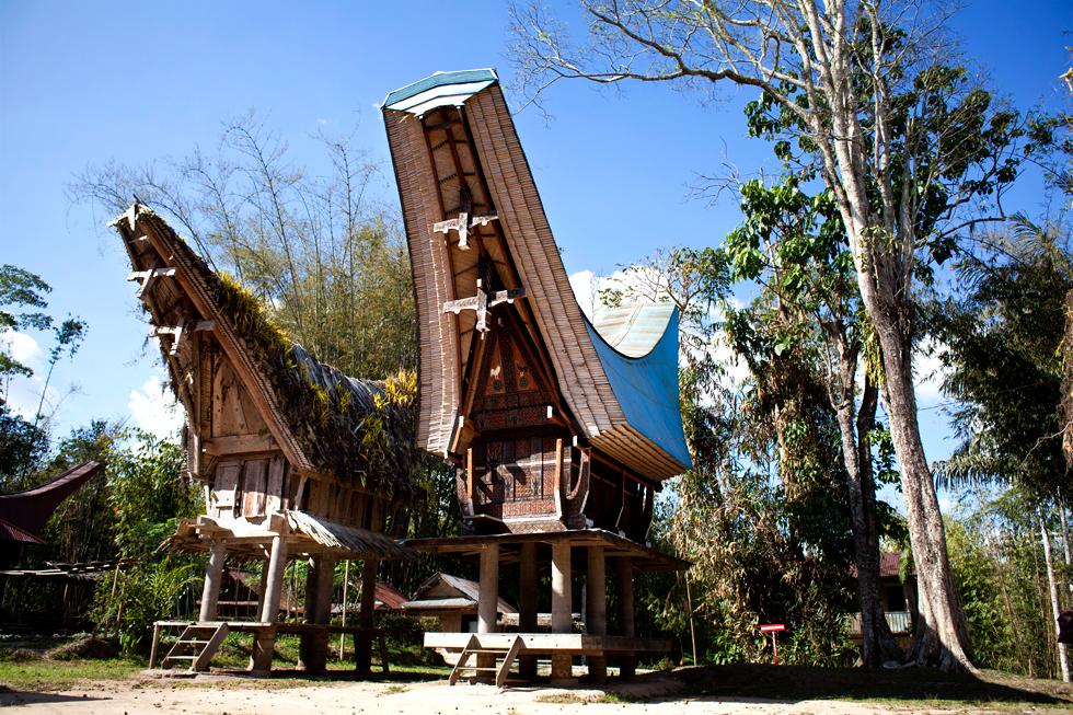maison traditionnelles pays toraja sulawesi indonésie