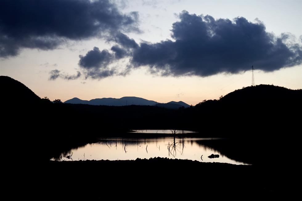 Yaté, la forêt engloutie au coucher du soleil, Nouvelle Calédonie : .
